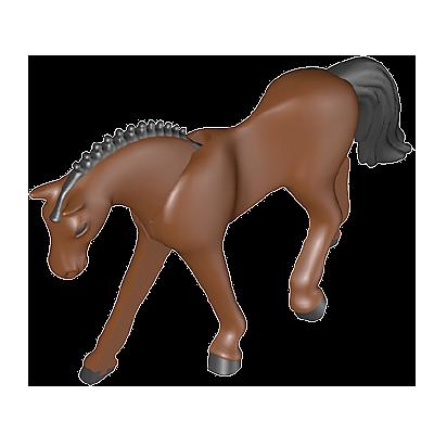 30667862_sparepart/Pferd C-Deutsches Sportpferd
