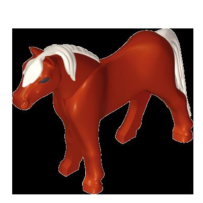 30669492_sparepart/Pony 11