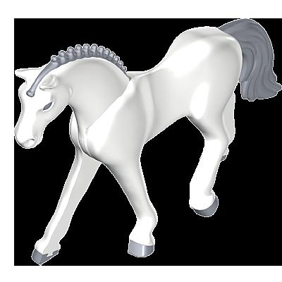 30670563_sparepart/Pferd C-Deutsches Sportpferd