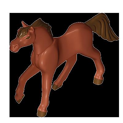 30672432_sparepart/Pferd B-Shagya Araber