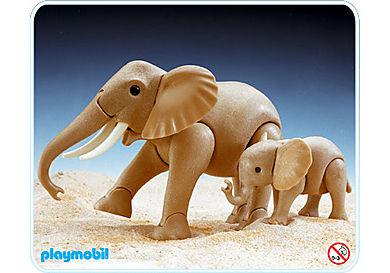 3493-A Eléphant et bébé