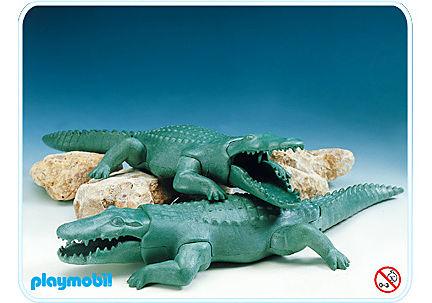 3541-A 2 Crocodiles detail image 1