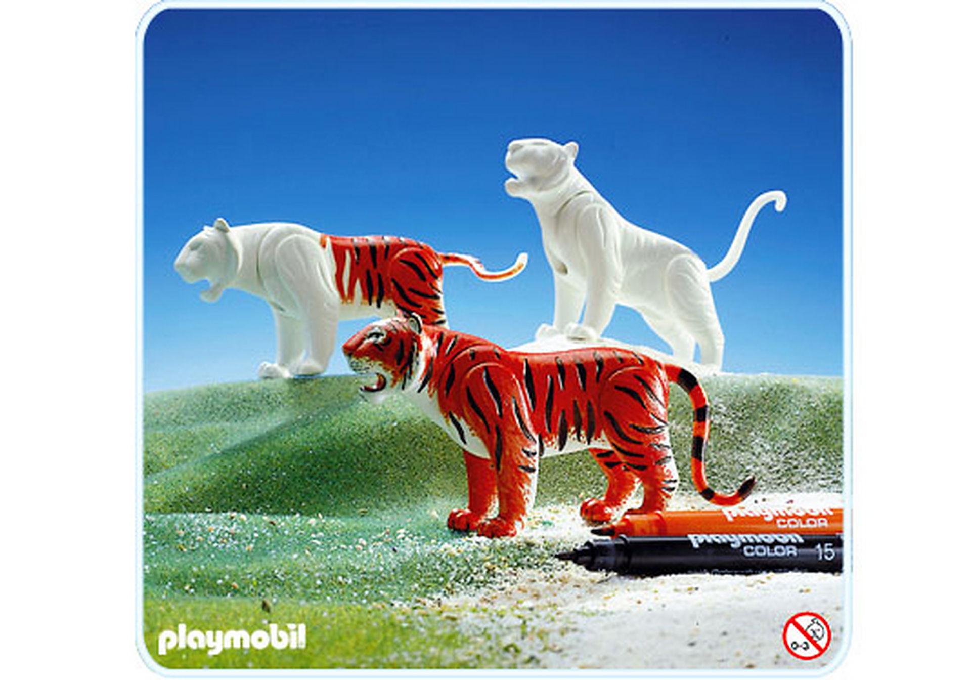 3648-A Tiger zoom image1