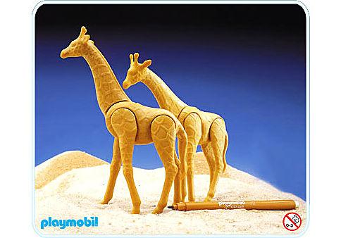 3672-A Giraffen detail image 1