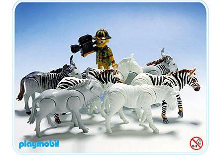 3677-A Zebras, Gnus, Kameramann detail image 1