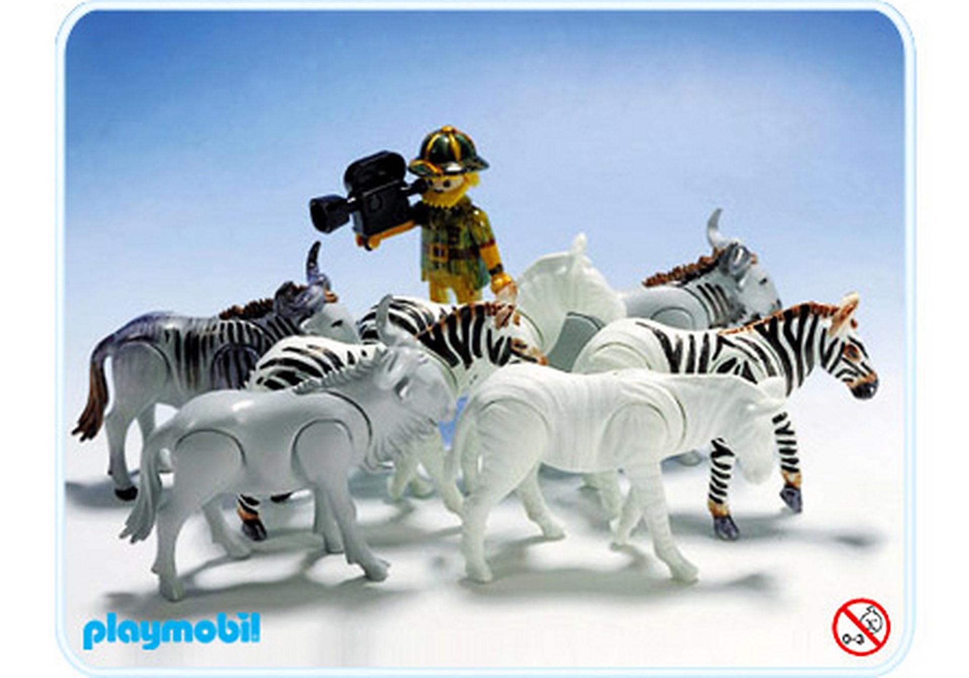 3677-A Zebras, Gnus, Kameramann zoom image1