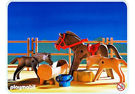 3856-A Pferdekoppel detail image 1