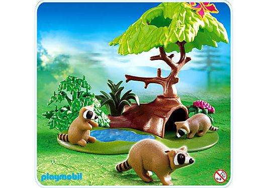 4205-A Famille de ratons laveurs detail image 1