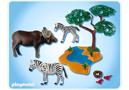 4828-A Buffle africain avec zèbres detail image 2