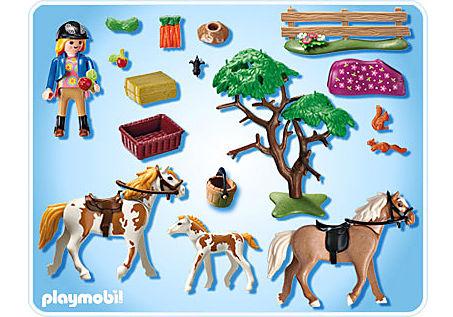 5227-A Pferdekoppel detail image 2