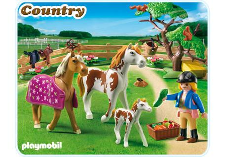 http://media.playmobil.com/i/playmobil/5227-A_product_detail
