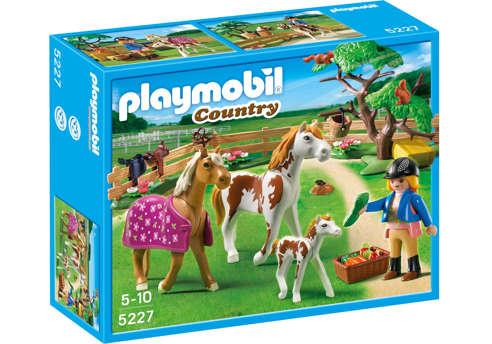 http://media.playmobil.com/i/playmobil/5227_product_box_front