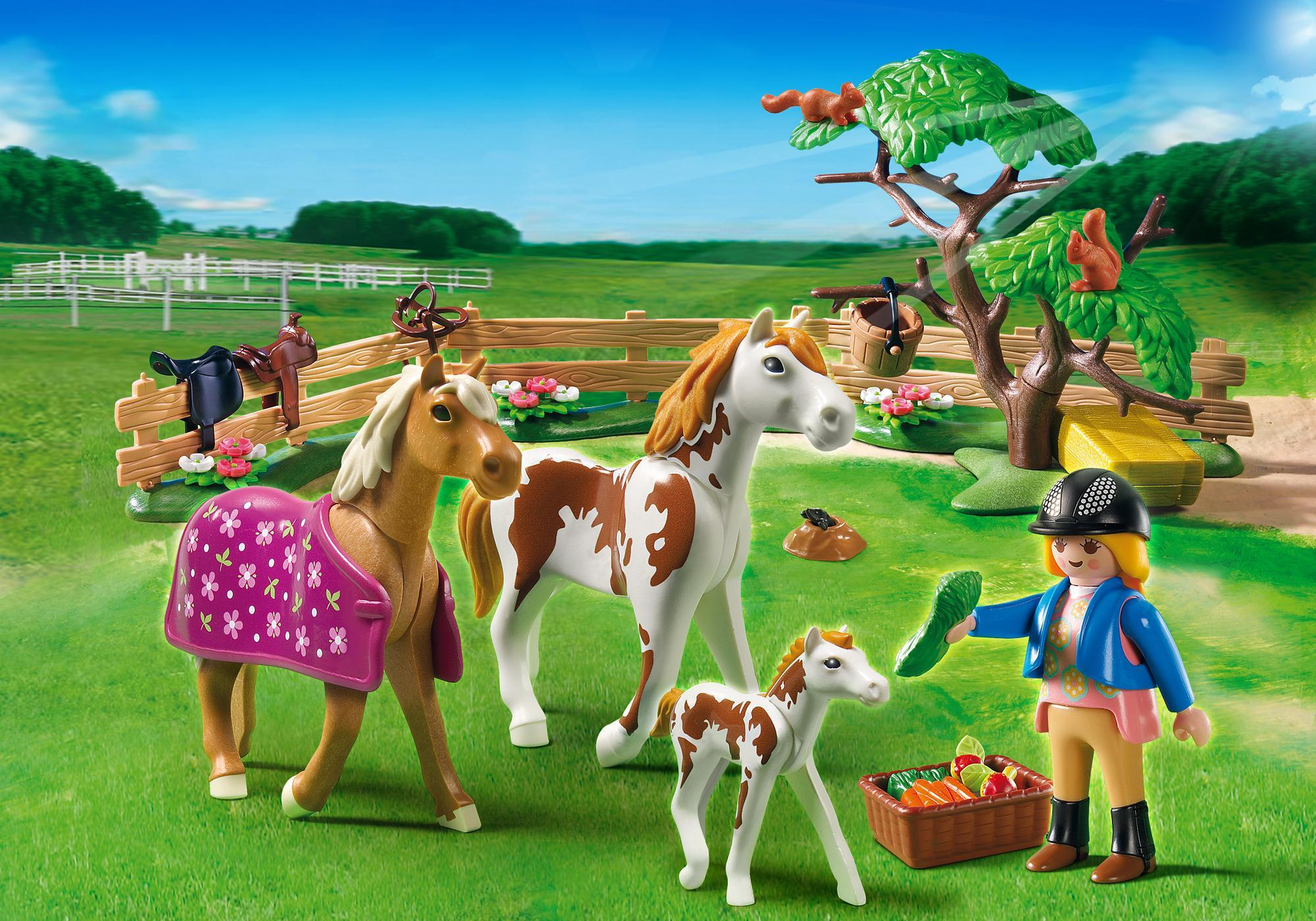 http://media.playmobil.com/i/playmobil/5227_product_detail