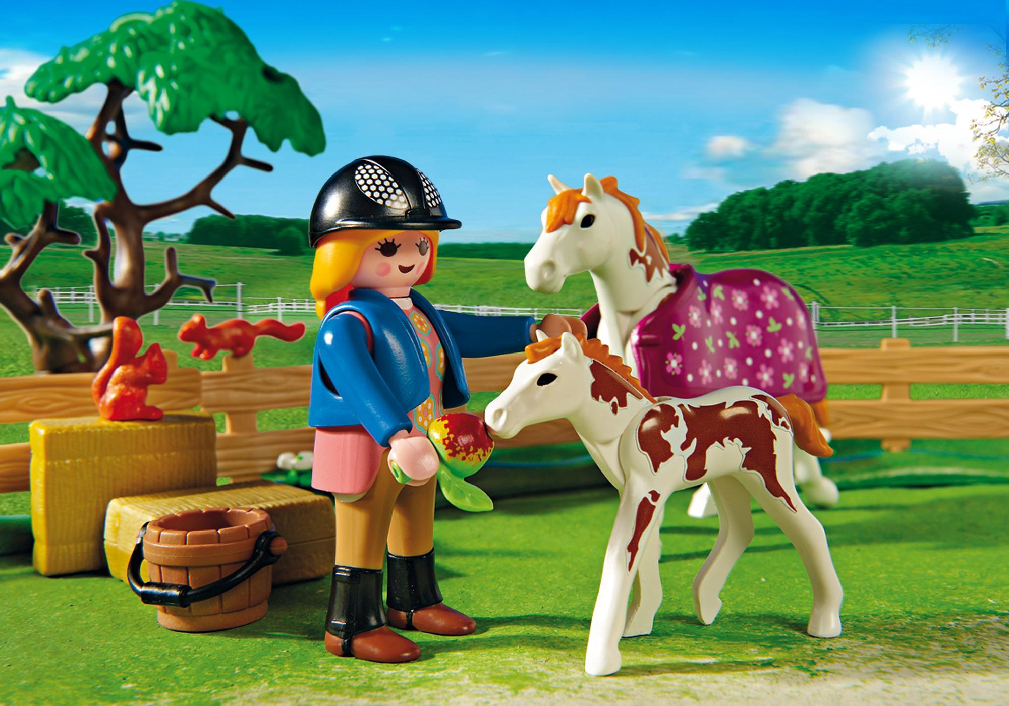 http://media.playmobil.com/i/playmobil/5227_product_extra1