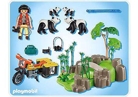 5414-A Pandafamilie im Bambuswald detail image 2