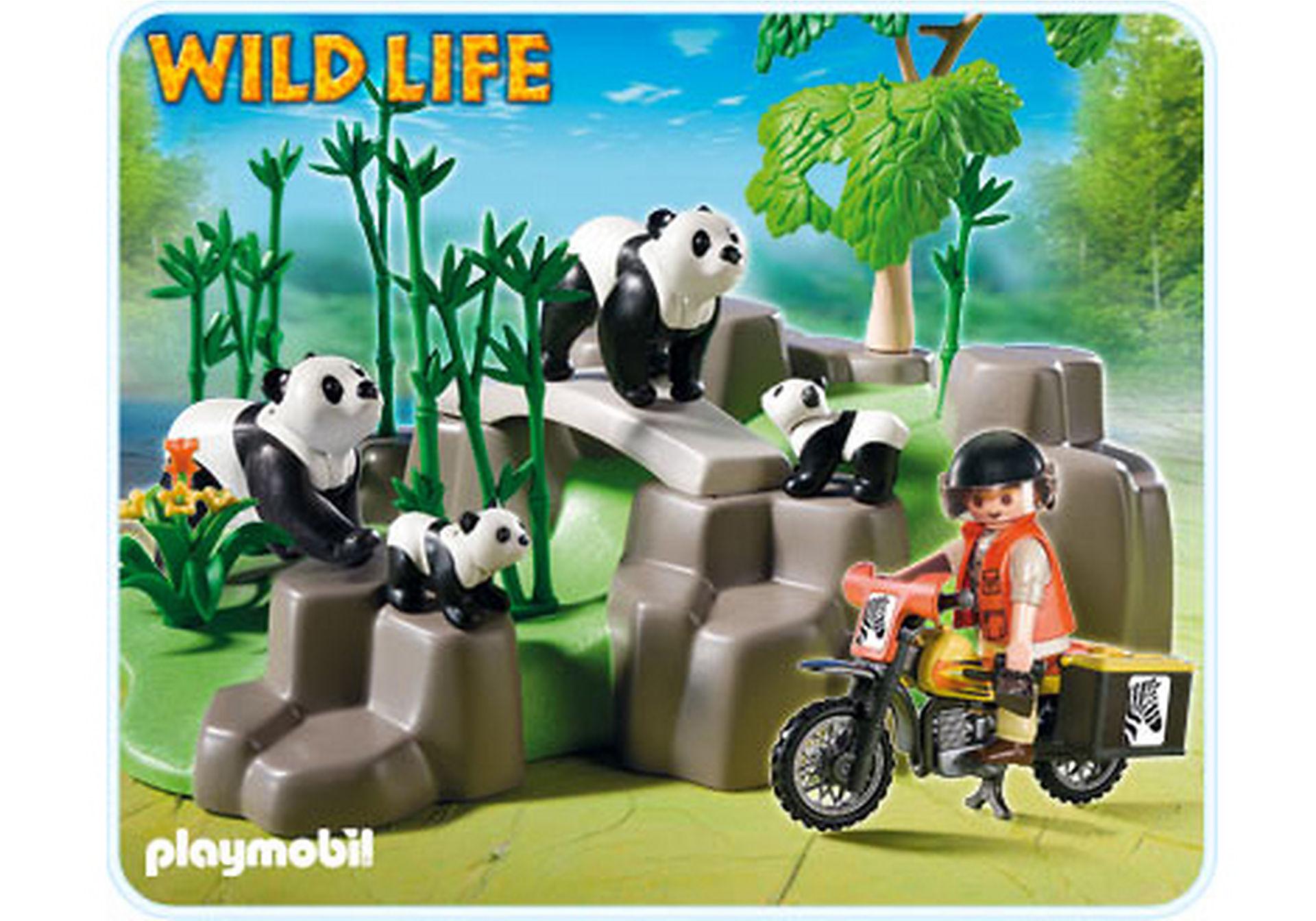 5414-A Pandafamilie im Bambuswald zoom image1
