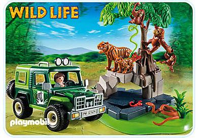 5416-A Geländewagen bei Tigern und Orang-Utans