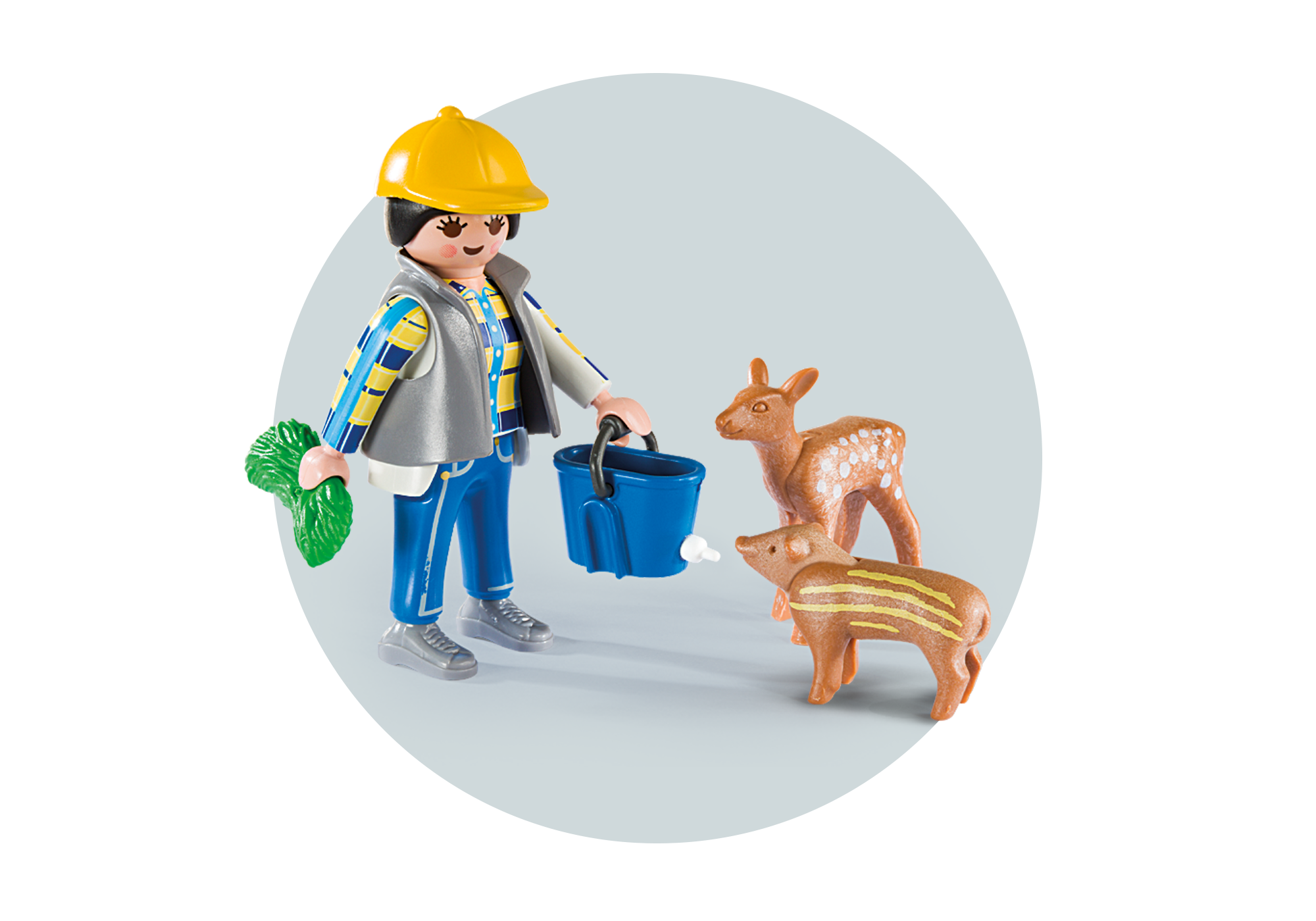 http://media.playmobil.com/i/playmobil/6158_product_extra2