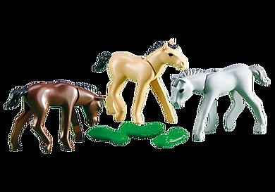 6263_product_detail/3 Pferdefohlen mit Futter