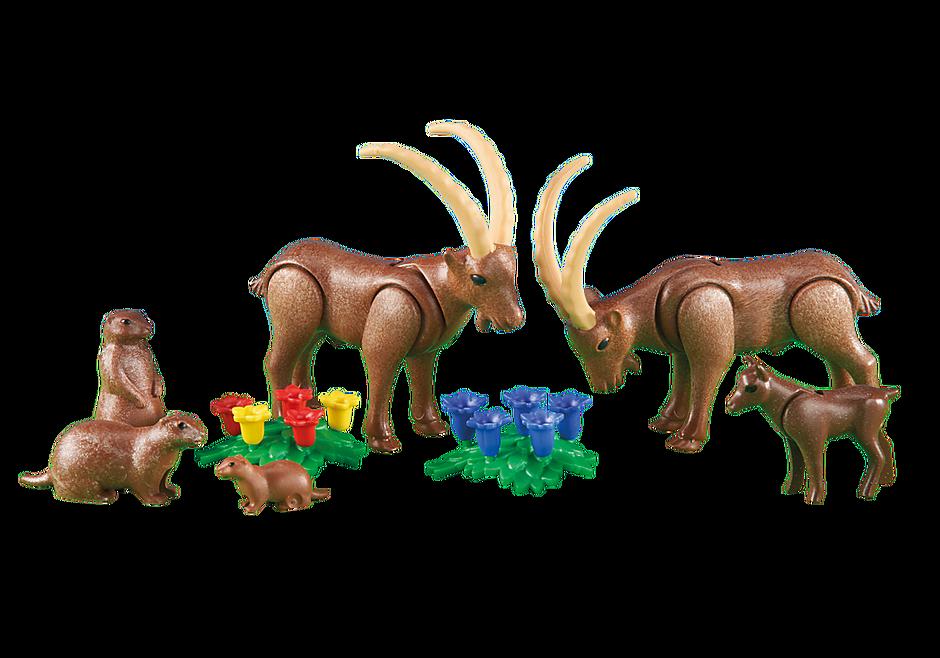 6318 Famille de bouquetins avec marmottes detail image 1