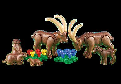 6318_product_detail/Famille de bouquetins avec marmottes