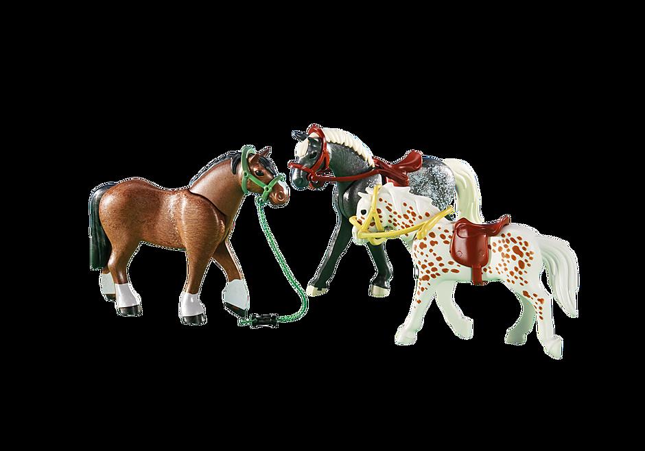 6360 3 Rijpaarden detail image 1