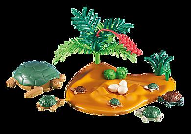 6420 Sköldpadda med ungar
