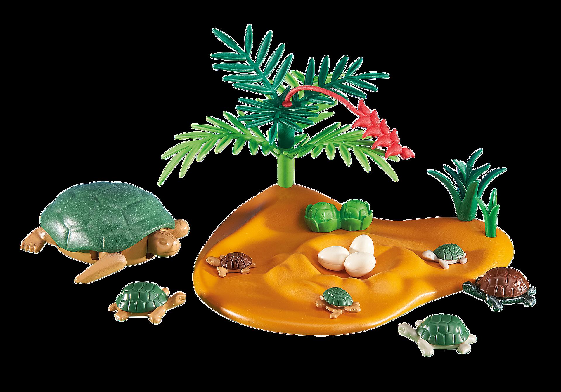 6420 Turtle with Babies zoom image1