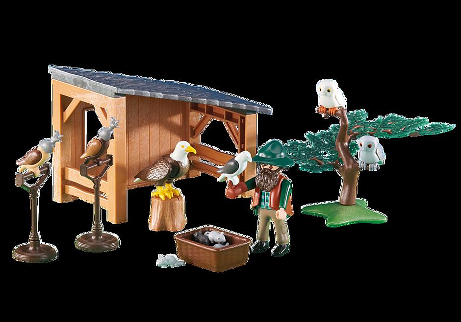 6471 Fauconnier avec abri et faucons detail image 1