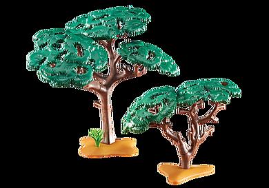 6475 Afrikanische Bäume