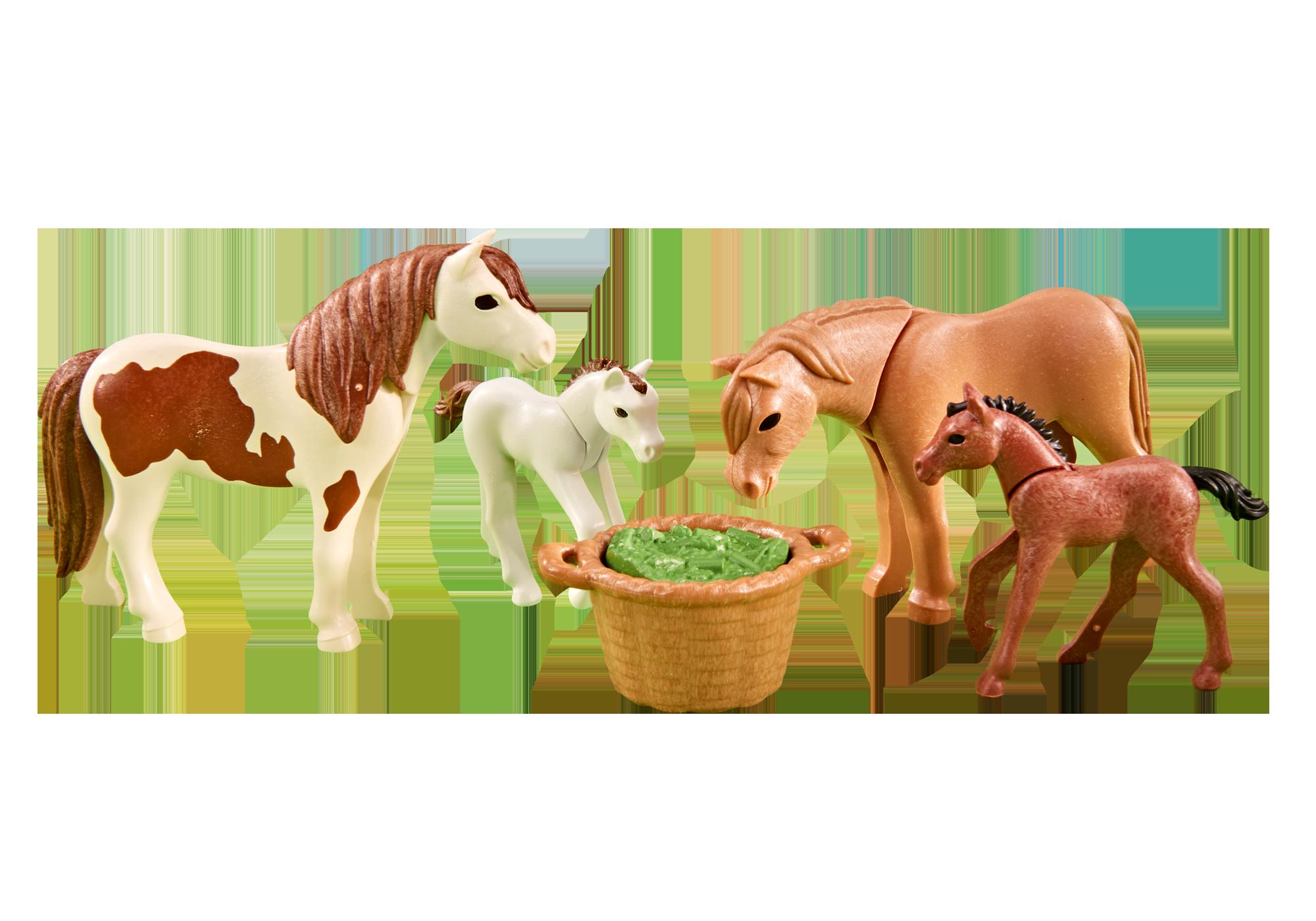 6534_product_detail/Pony con puledro
