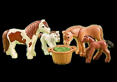 6534 Pony's met veulen