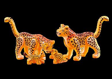 6539 Famille de léopards