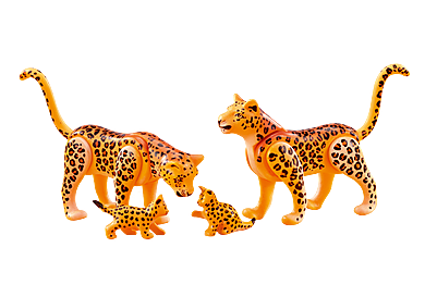 6539 Leopard Family