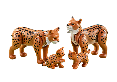 6540 Famille de lynx
