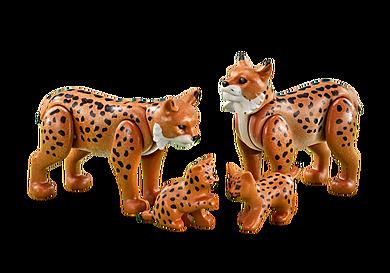 6540 Lynx Family