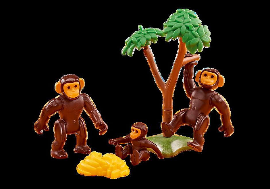 6542 Famiglia di Scimpanzé detail image 1