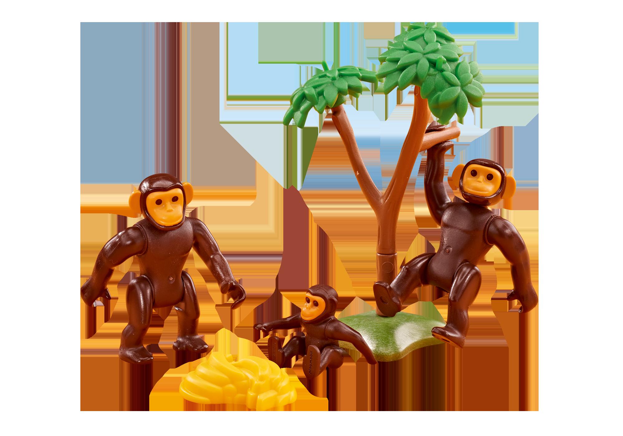 6542_product_detail/Famiglia di Scimpanzé