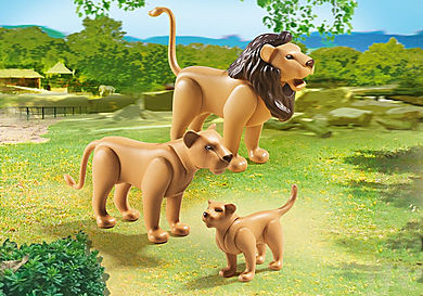 6642_product_detail/Lion Family
