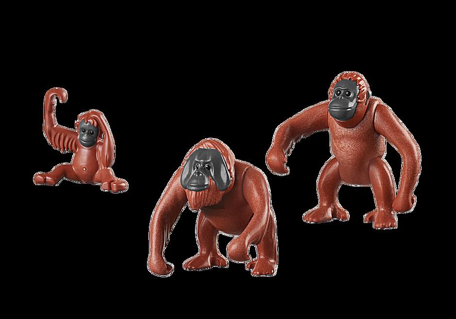 6648 Orangutan Family detail image 3