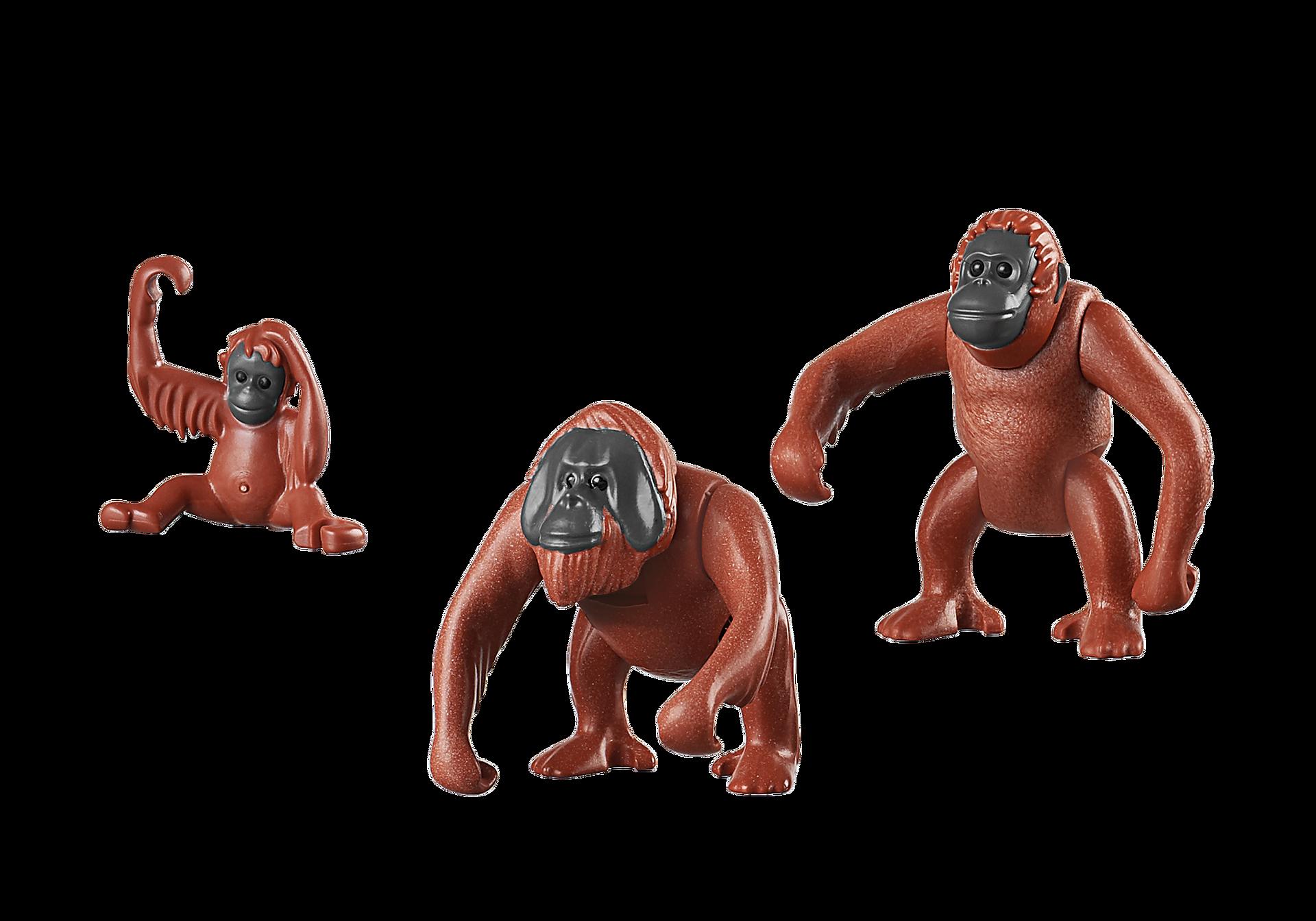 6648 Orangutan Family zoom image3