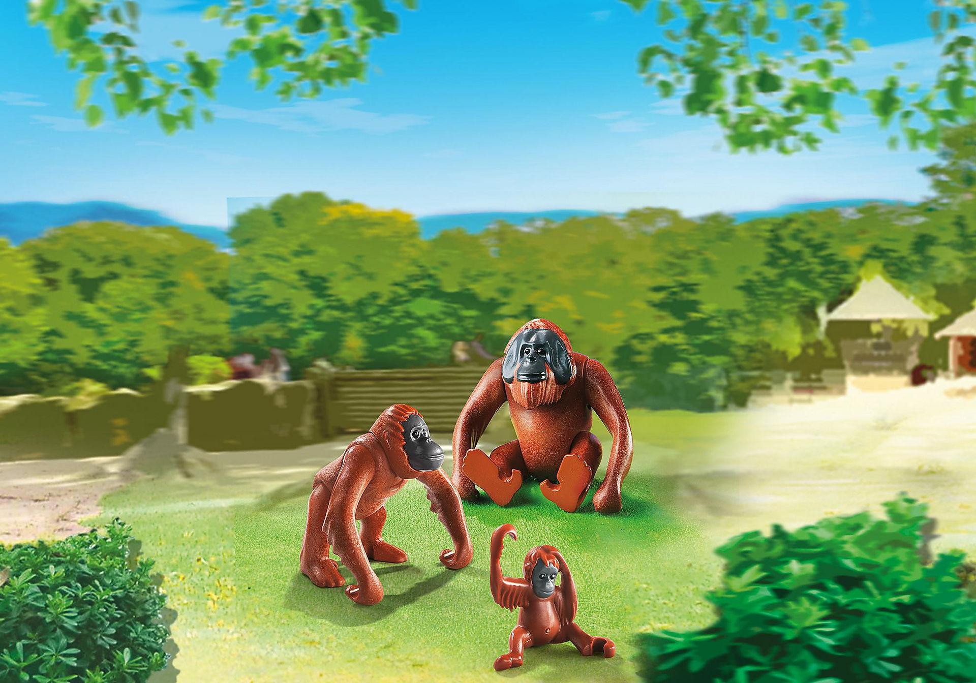 6648 Orangutan Family zoom image1