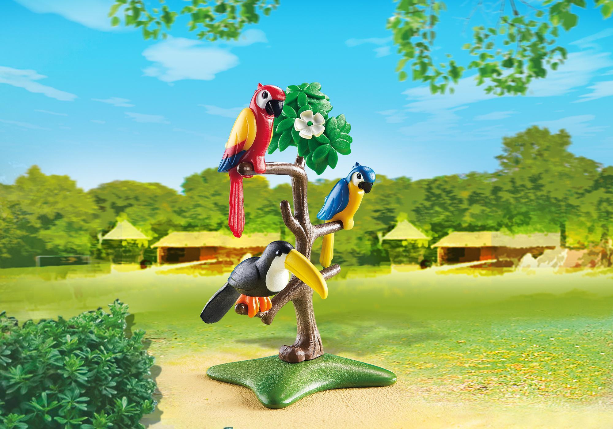 6653_product_detail/Pájaros Tropicales