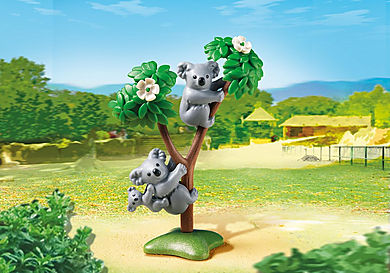 6654 Koala Family
