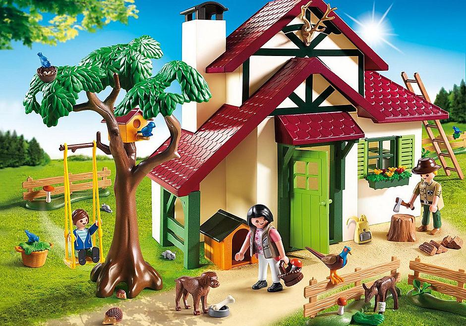 6811 Maison forestière detail image 1