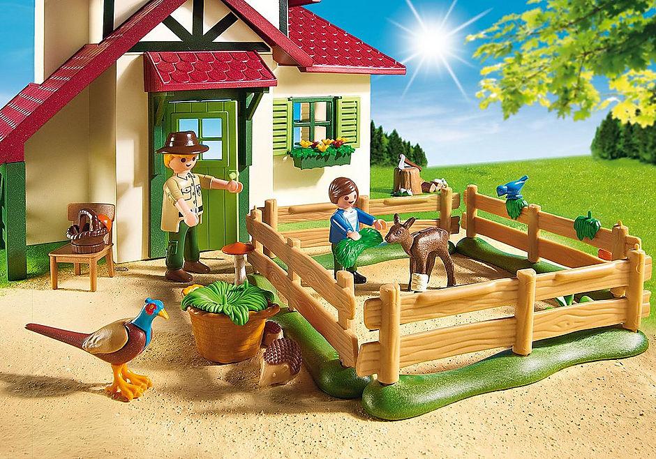 6811 Maison forestière detail image 6