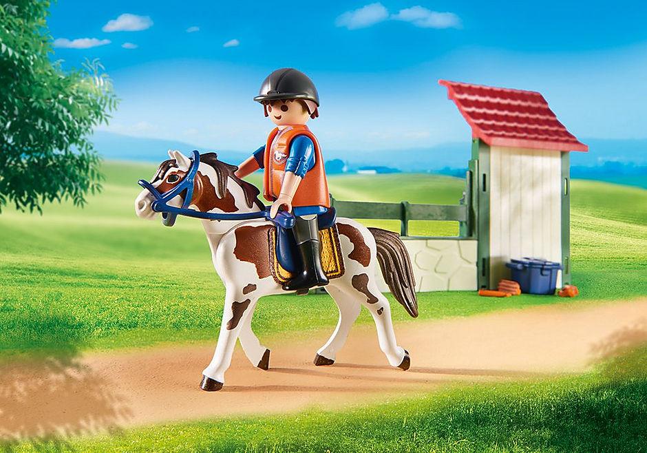 6929 Area di cura dei cavalli detail image 7