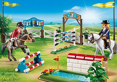 6930 Paardenwedstrijd