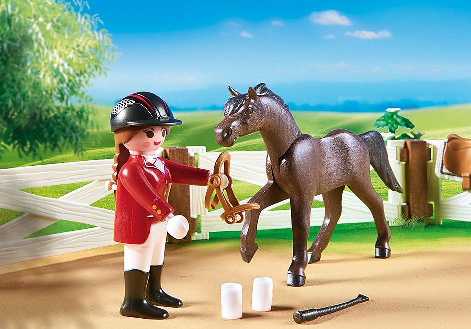 6930 Paardenwedstrijd detail image 5