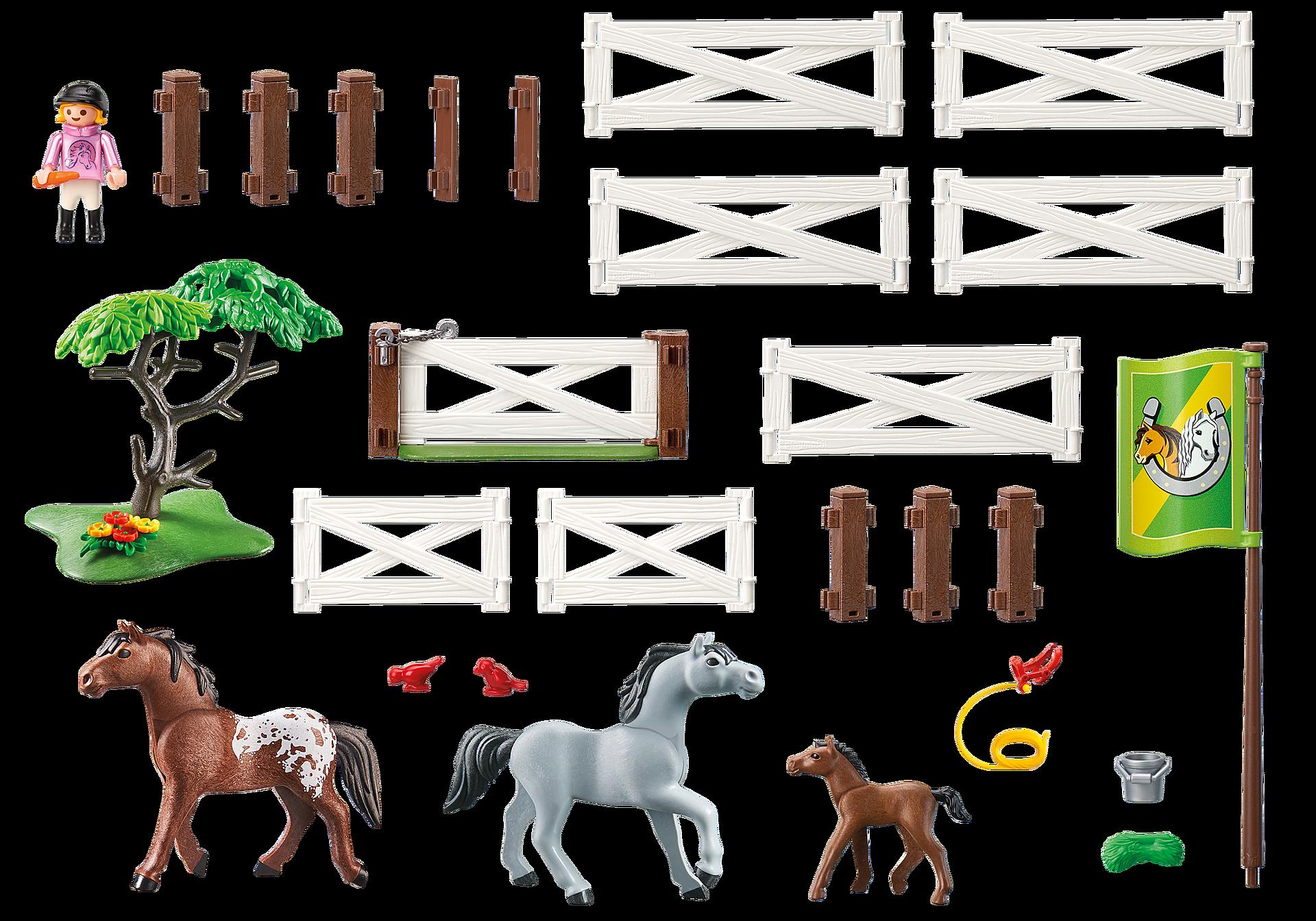 6931 Enclos avec chevaux  zoom image4